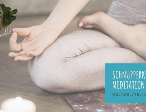 Online Schnupperkurs Meditation
